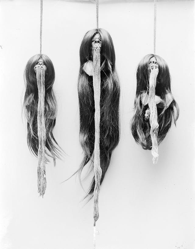 Image of three shrunken heads with strings from mouth, hanging on ropes