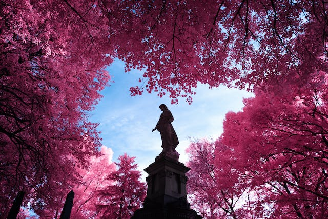 Infrared photograph of a statue framed against the sky and surrounded by pink trees, a result of the infrared style. The statue has its hand with it