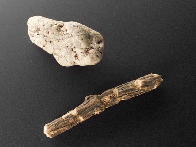A white stone, veined and pockmarked; below it a short stick
