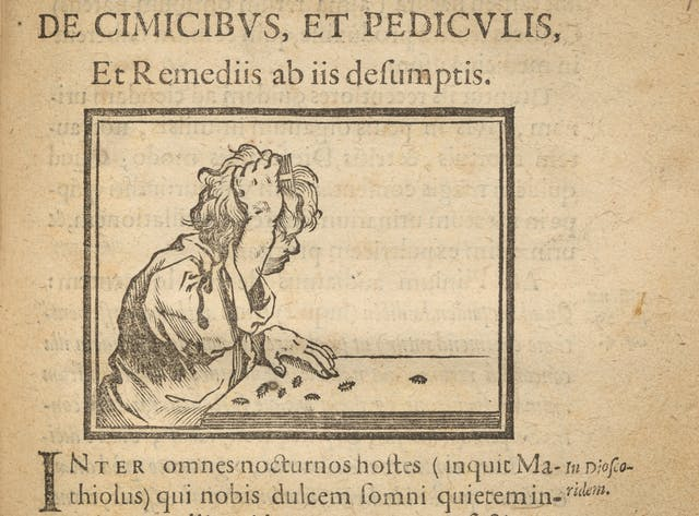 Photographic detail of an illustration on the page of an early printed book from 1638, showing a man combing lice out of his hair.