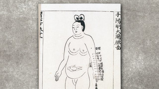 Photograph of a chart showing locations on the large Intestine channel of arm yangming where acupuncture is prohibited during the eighth month of pregnancy, from Ishinpo [Chinese: Yi xin fang] (Remedies at the Heart of Medicine), by the Japanese author Yasuyori Tanba. The chart is resting on a concrete textured background.