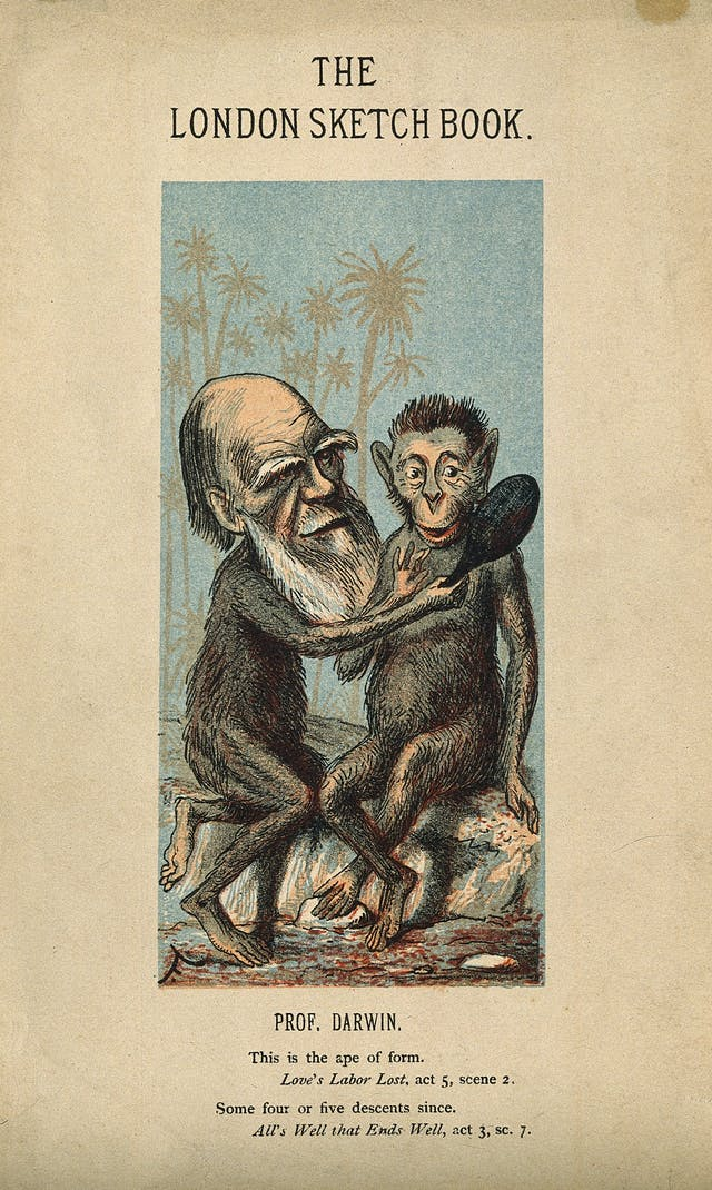 "Front page of ""The London Sketch Book"" with a picture depicting Darwin as an ape showing a mirror to another ape. Text reads: ""Prof. Darwin. ; This is the ape of form., Love"