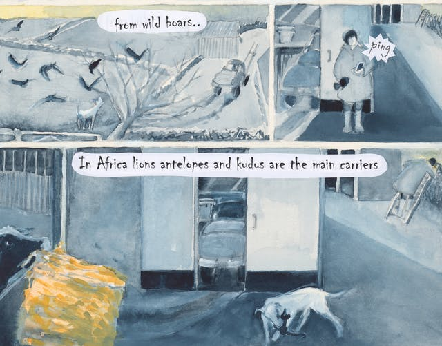 Watercolour comic set on a farm. Text: