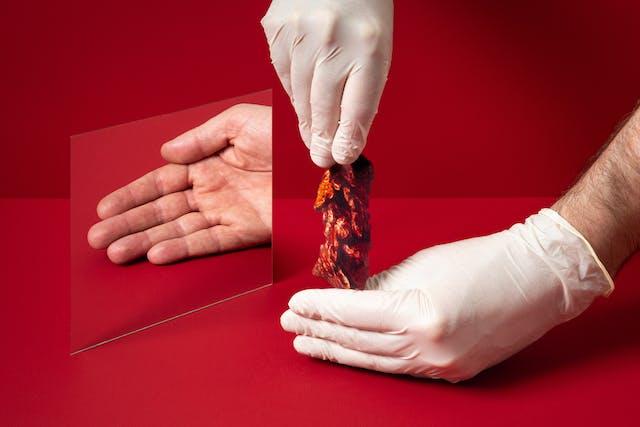 红色背景上镜子的照片。前景中有两只手,一只手从另一只手后面拉着一幅解剖图。在镜子的映照下是一只张开的、空荡荡的手。