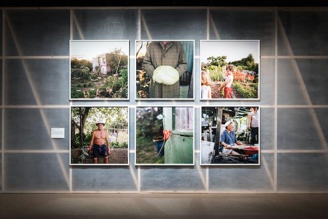 照片在展览馆空间中显示一段半透明的织物墙体,揭示后面的木结构,在白色木制框架中有六个框架广场印刷。图像全部采用分配环境,并显示肖像和环境研究的组合。