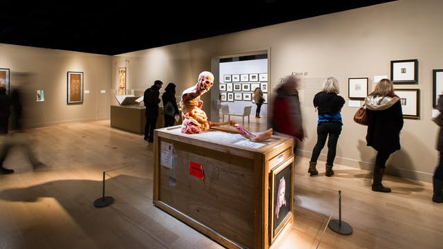 Photograph of visitors exploring the exhibition, Death: A Self Portrait at Wellcome Collection.