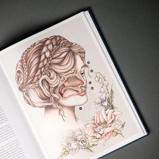 一张打开的书在灰色纹理背景上的照片。这本书倾斜了,只有左边一页的一部分看得见。右手页有一整版的女性插图