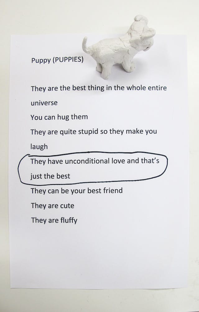 A photograph showing a piece of A4 white paper on a table with the heading Puppy (Puppies) typed in black, as well as a small well formed white clay puppy standing in the top right corner facing out of frame. Below the heading, a list reads: They are the best thing in the whole entire universe; You can hug them; They are quite stupid so they make you laugh; They have unconditional love and that's just the best; They can be your best friend; They are cute; They are fluffy.  'They have unconditional love and that's just the best' is circled in black felt tip.