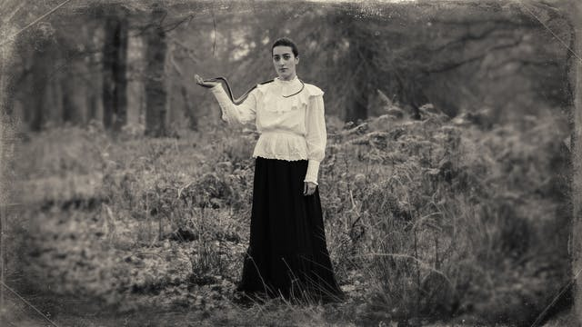 Sepia toned photograph with a digital filter applied to give the impression the photograph was created using a glass-plate process from the mid 19th century. The effect of this filter includes scratches and fingerprints. The photograph shows a woodland scene made up of tall grasses, bracken and distant trees. In the centre of the image stands a tall woman dressed in a black floor length skirt and a white blouse embellished with frills and large cuffs. She is looking straight to camera, her right arm is raised to her side, palm facing upwards. Wrapped around her neck and running over her shoulder and down to her open hand is a long dark toned snake. The centre of the frame is in sharp focus, but the edges descend quickly into a blur.