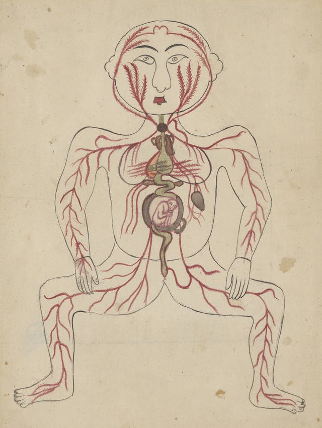 Colour drawing showing the outline of a woman face on, with the arteries and veins marked out in red, some of the vital organs, and a foetus in the centre of the body.