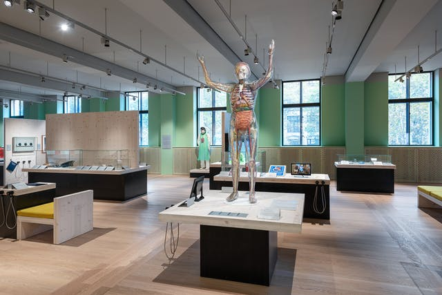 A photograph showing the Being Human exhibition space with windows running along a pastel green painted wall overlooking Euston Road directly opposite. A life-size transparent woman showing internal organs is displayed standing on a table with her arms raised above her head in the foreground. Further wooden topped tables on black plinths can be seen with electronic tablets, glass cabinets, and hanging audio handsets. Some of the wooden tables have wooden backboards and wooden benches with cushions.