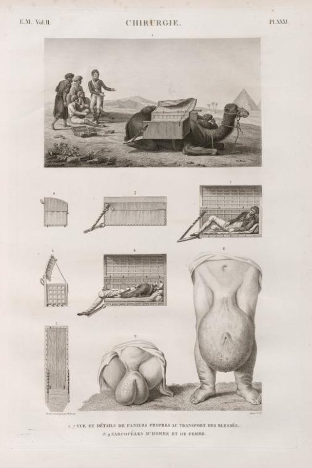 Page from book with an image of a camel crouching with a number of men. Below are diagrams of the camel and its side boxes.