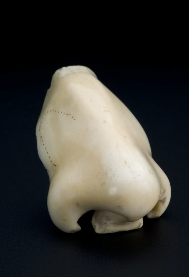 A piece of porcelain in the shape of a human nose on a dark background.