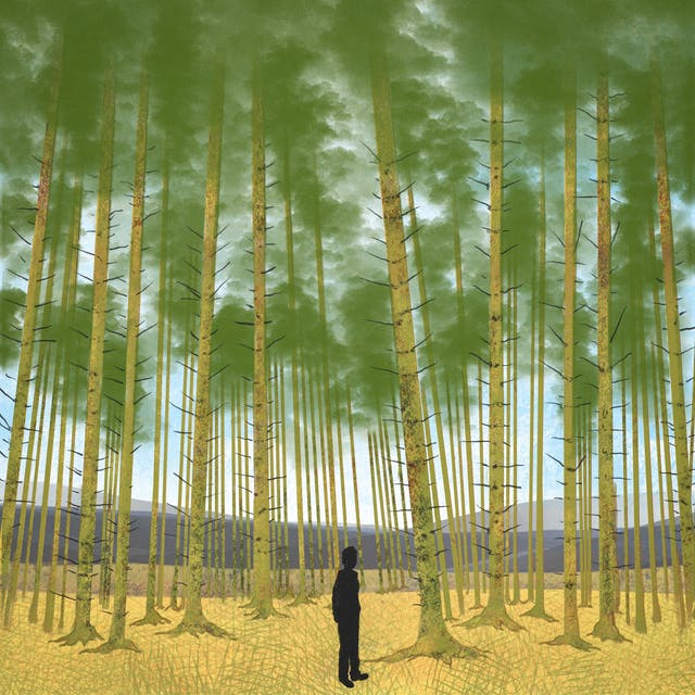 A digital illustration of an isolated figure within a tall forest. The figures is shown in silhouette and is dwarfed by the trees surrounding them, in the distance there are rolling hills across the horizon.