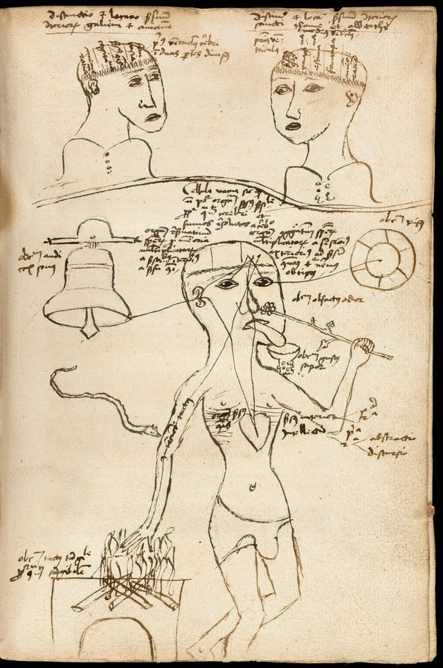 Image of parchment with loose ink drawings of two human heads at the top and a full body below with labels and text