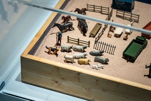 Photograph of the corner of a wooden box tray within an exhibition display case, filled with sand. On the sand are arranged small models of farmyard animals, fences and vehicles.