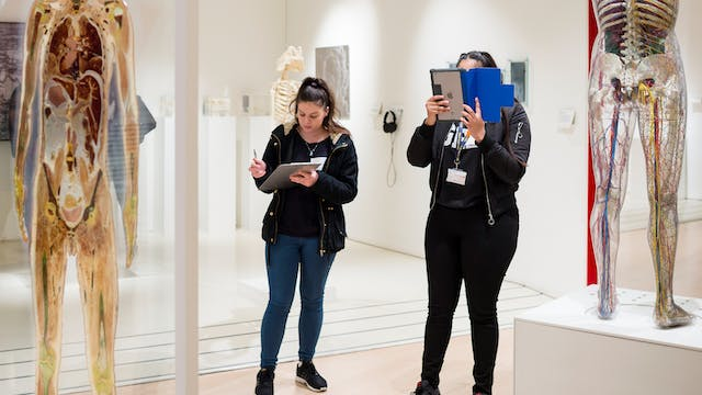 Photograph of two young students exploring the Medicine Now gallery at Wellcome Collection.