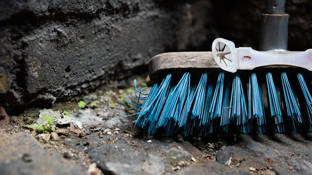 Photograph of a close-up of the head on a broom standing with its blue bristles on a brick floor. The broom is leaning against a black brick wall. Between the bricks on the floor can be seen small green sprouting leaves. Attached to the wood of the broom head is a plastic contraption with a star shaped hole, possibly for holding a cloth in place.