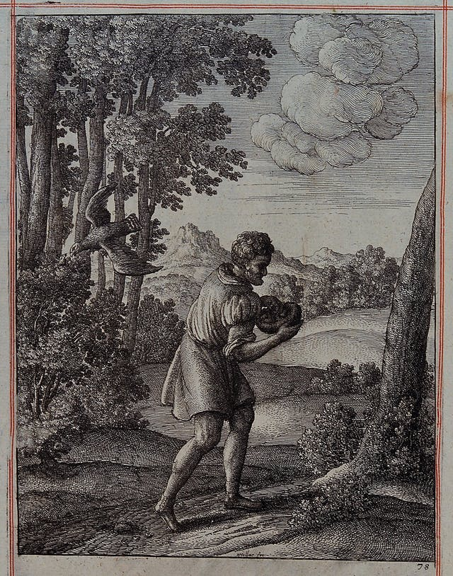 Etching showing a peasant carrying the nest of a nightingale, which is is sitting on a bush and is about to be swooped by a hawk