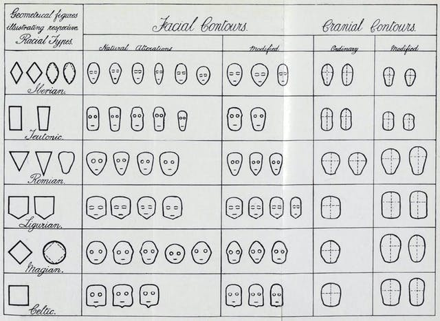 A black and white, hand drawn chart showing different head shapes.