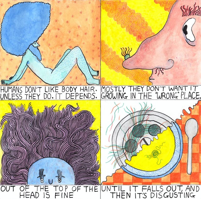Comic about hair, and where and when humans find their hair acceptable or unpleasant.