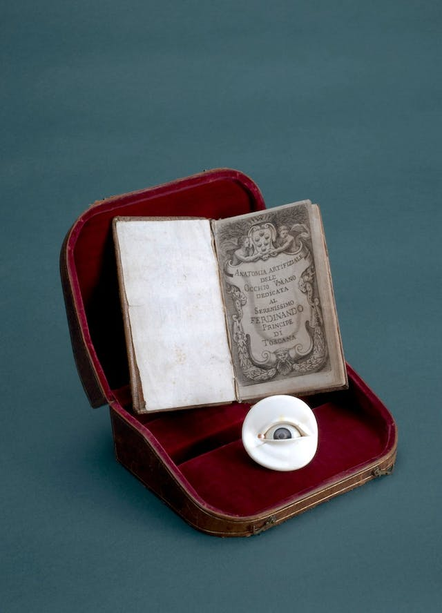Image of small red case with an ivory eye model inside and small book
