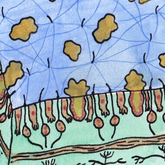 Webcomic about senses by Rob Bidder (detail)