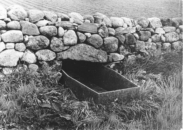 Mortsafe in graveyard at Durris, Aberdeenshire, used as a drinking trough for cattle