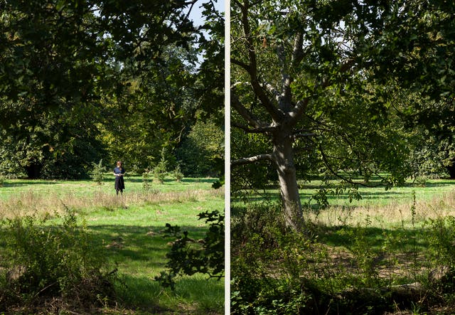Photographic diptych. The image on the left shows a parkland scene in bright sunlight with the distant figure of a woman standing in the centre of the frame. She is surrounded by rough grassland. In the distance are large trees and in the foreground she is frames by the branches of more trees. The image on the right shows a wooded parkland scene made up of rough grassland and trees. The scene is in full sun, with some areas cast into dappled shade by the tree canopy.