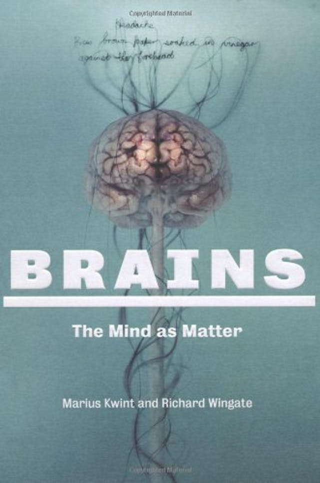 Book cover of Brains by Marius Kwint & Richard Wingate