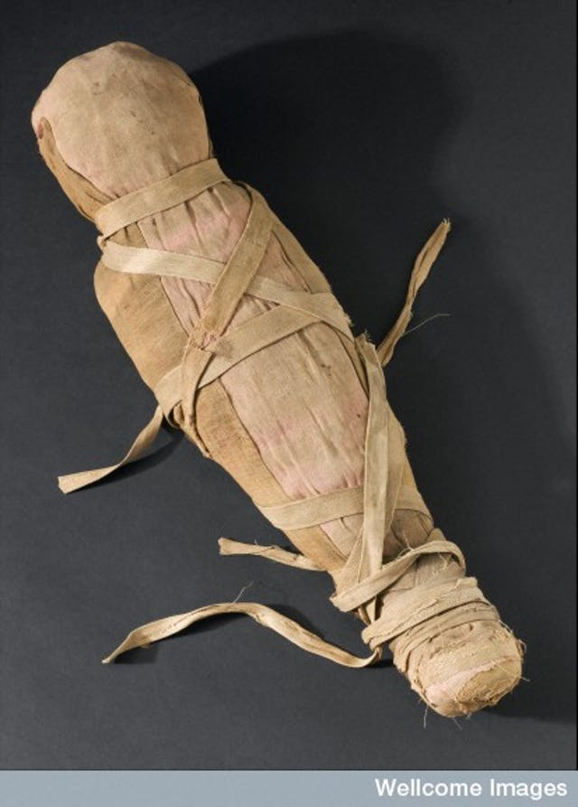 Photograph of a mummified infant. Top three quarter view. Black background.
