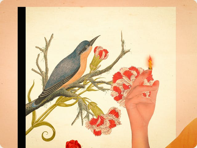 Detail from a larger mixed media digital artwork combining found imagery from vintage magazines and books with painted and textured elements. The overall hues are oranges, yellows and reds. At the centre of the artwork is a recessed window frame. Through the window a drawing of a kingfisher can be seen, perching on a branch next to a green stem from which red and white flowers are blooming. Appearing into the image from the right is the raised right hand of a woman and  a flame is appearing from her index fingertip.