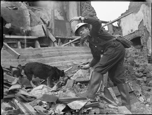 A black and white picture of a man and a dog searching through rubble.