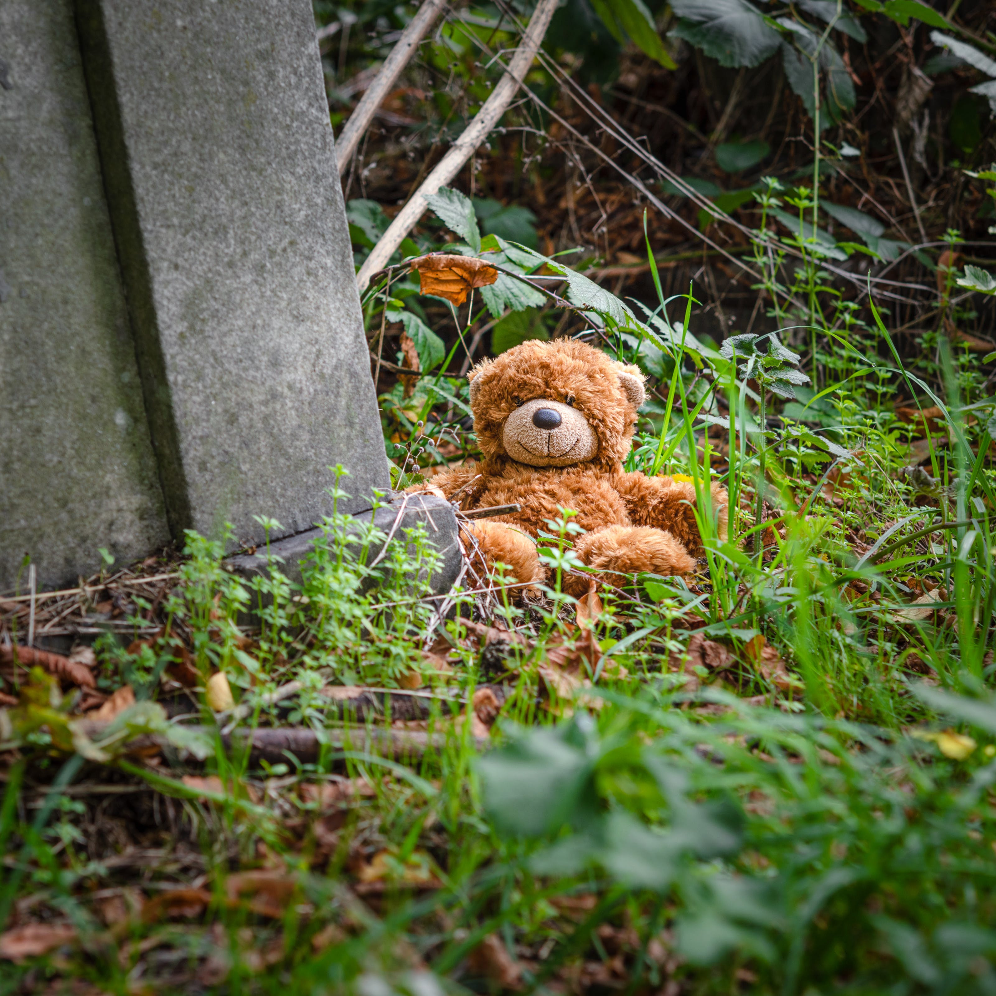 Photograph of small teddy bear sitting within the surroundings of a cemetery, with grave stones and ivy.