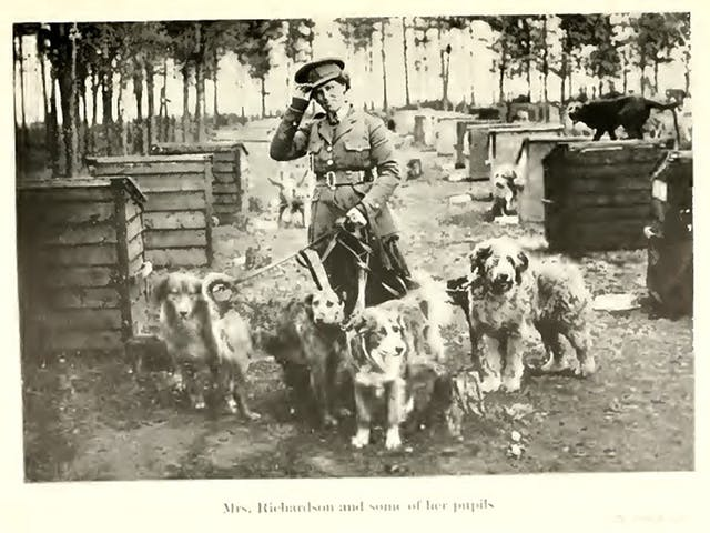 Black and white picture of a woman holding four dogs on leashes. Caption reads