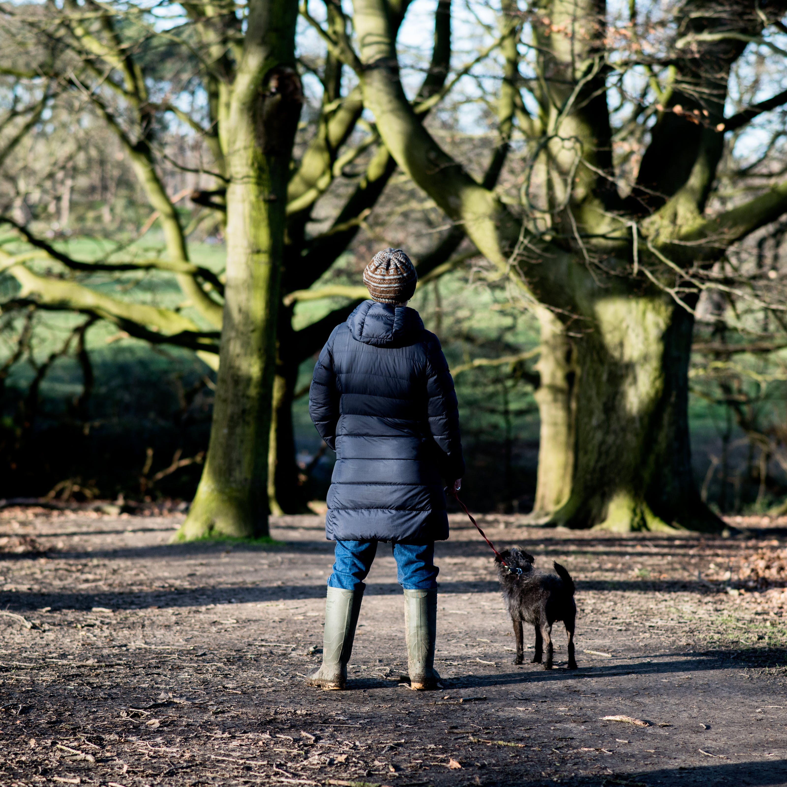 Photograph of a woman wearing a wooly hat, puffer coat and welly boots, standing with her back to the camera in wintery woodland setting. In her right hand she is holding a lead attached to a small black dog, also looking away from the camera. Low sunlight streaks through the trees from the left of frame.