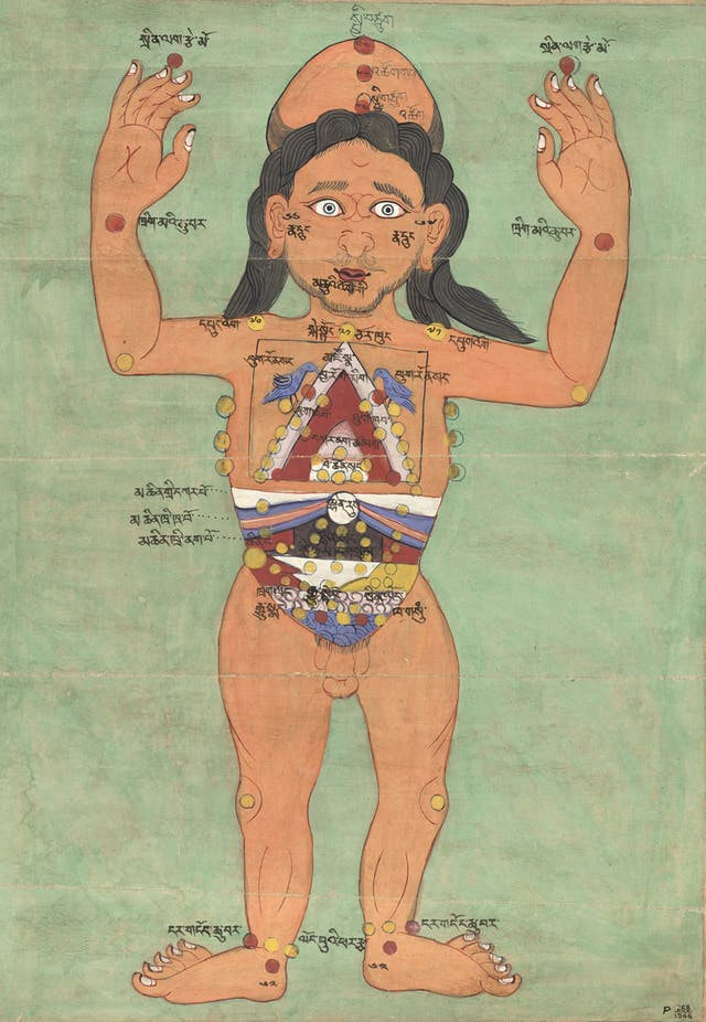 A colour illustration showing a naked man with his arms raised, with several points marked on his body in different colours.