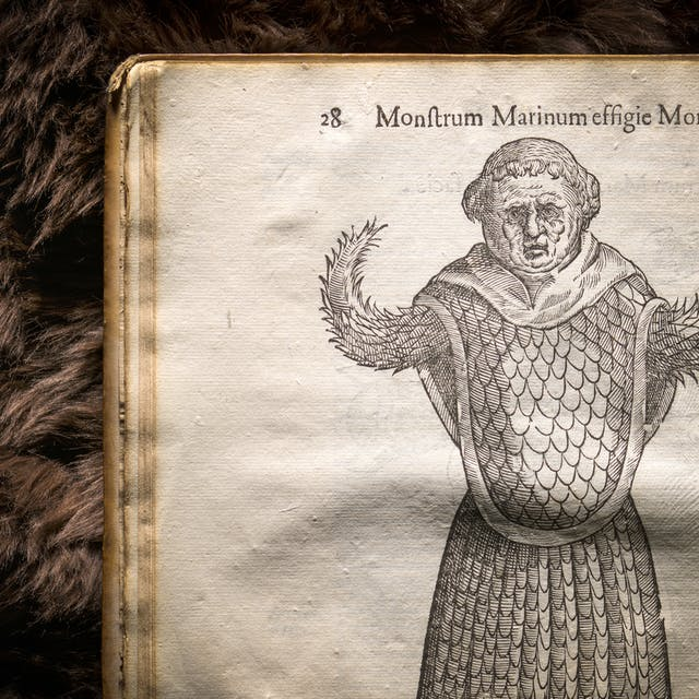 Photograph of an illustration in a 17th century early printed book, of an imagined monster. Behind the book is a brown fur background.