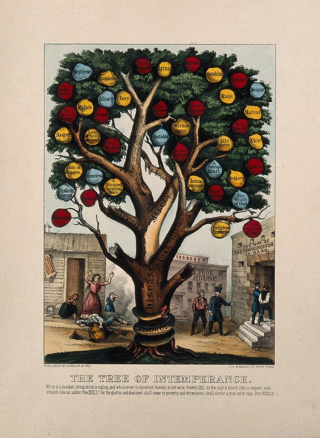 Colour lithograph depicting the tree of intemperance with fruit labelled with negative consequences of drinking including rags, hatred, despair, loss of self-respect and a bloated countenance.