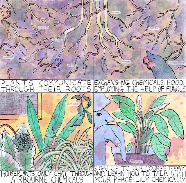 Roots comic by Rob Bidder