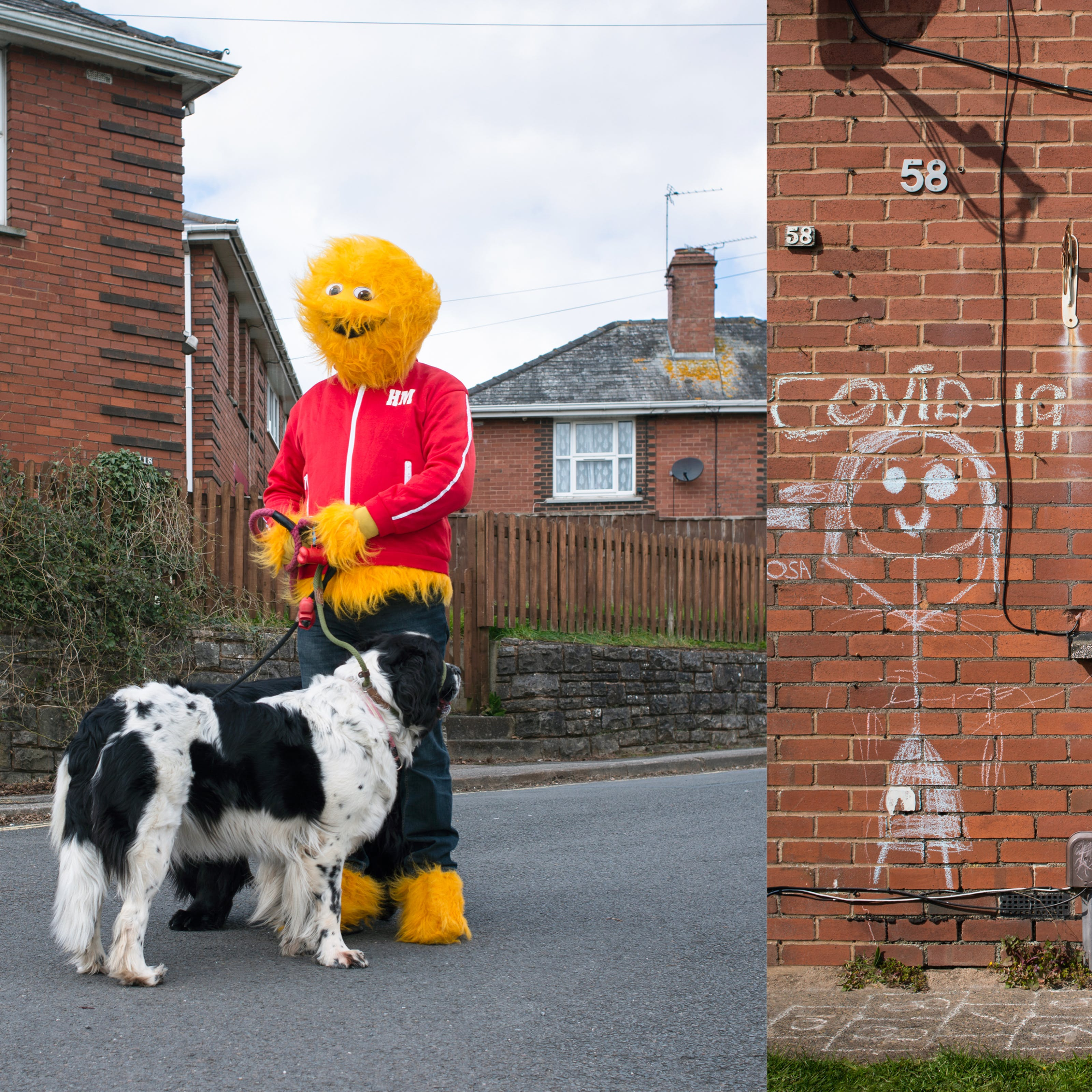 A photographic diptych. The image on the left shows an adult wearing a furry yellow Honey Monster costume, including a red tracksuit top and blue tracksuit bottoms standing in a residential road with red brick houses beyond. The Honey Monster is holding a large black and white dog facing away from camera. The image on the right shows a section of the ground floor of a red brick house with a white PVC door and window with net curtains. On the brick wall surrounding the window there is a large chalk drawing of a stick person with Covid-19 written above it. Beneath the window is written 'stay home'.