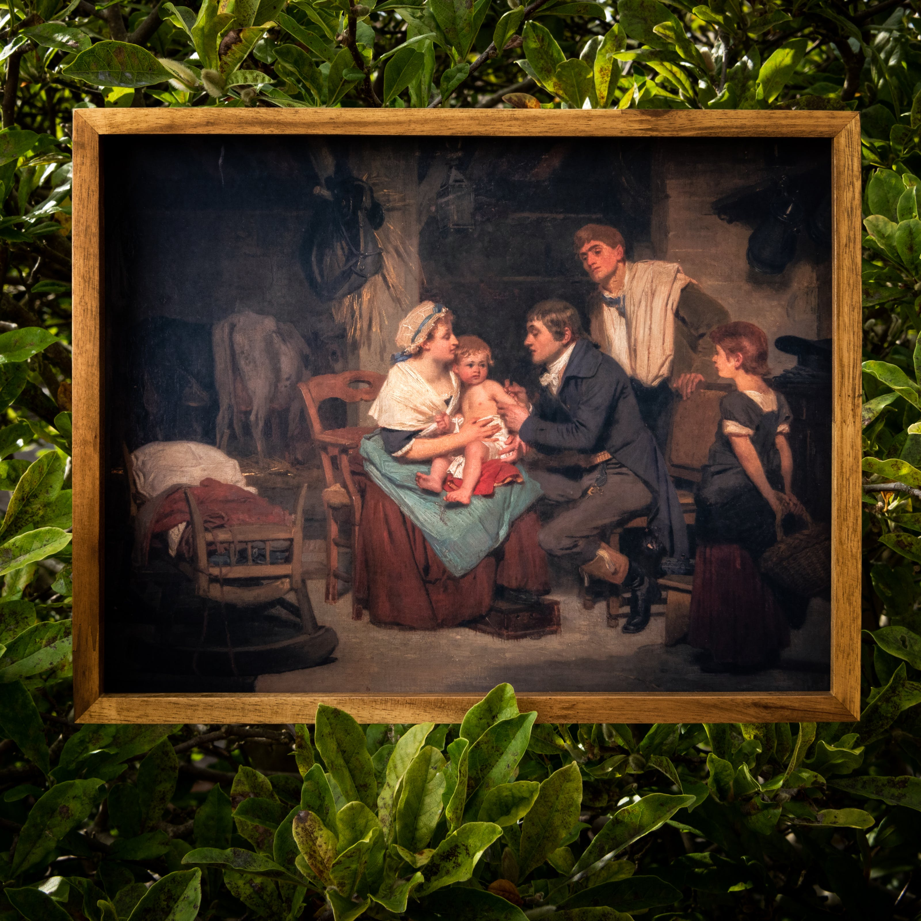 Photograph of a facsimile of an oil painting in a thin wooden frame, hung within the large green leaf foliage of a bush. The oil painting depicts a scene where a man is giving a small child a vaccination. The child is sat on it's mother's knee and the older sister and father figures look on. The scene is set in the 18th century.