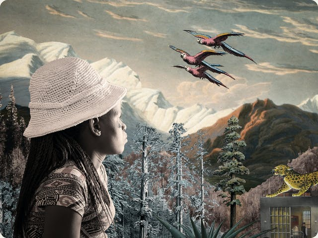 Artwork using collage. The collaged elements are made up of archive material which includes vintage and contemporary photographs, etchings, painted illustrations, lithographic prints and line drawings. This artwork depicts a scene with an urban and rural combined background, where high mountains and hills rise in the distance. In the middle distance are a series of tall trees and a jail like structure with bars. On top of the jail stands a large leopard looking up to the sky. In the foreground on the left side of the image is a woman wearing a pattered dress and knitted to crocheted hat. She is looking away into the distant hills with a tear rolling down her right cheek. In the cloud scattered sky above are 3 parrots in flight.