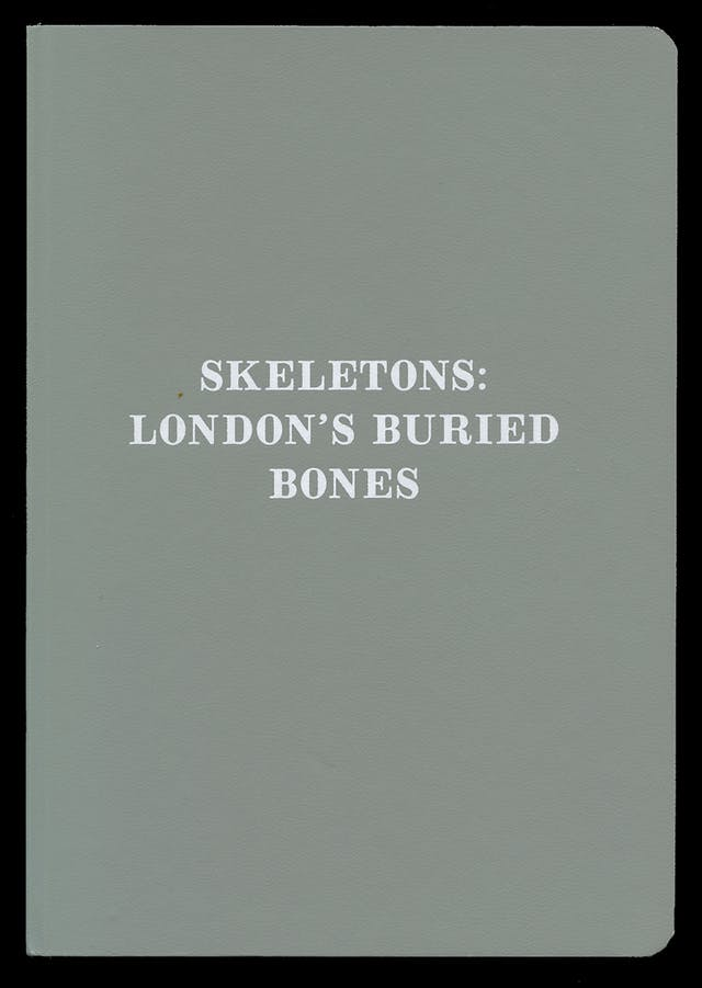 Book cover of Skeletons by Edited by Emily Sargent