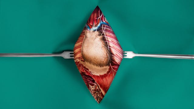 Heart illustration by Emily Evans