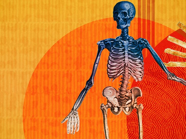 Detail from a larger abstract digital illustration featuring three anatomical depictions of the human body. This image shows the skeletal bone structure. Circles of energy are shown to be radiating from each of the bodies, overlapping each other. The main colour combinations are yellows, reds and oranges. The background shapes contain textures and patterns.