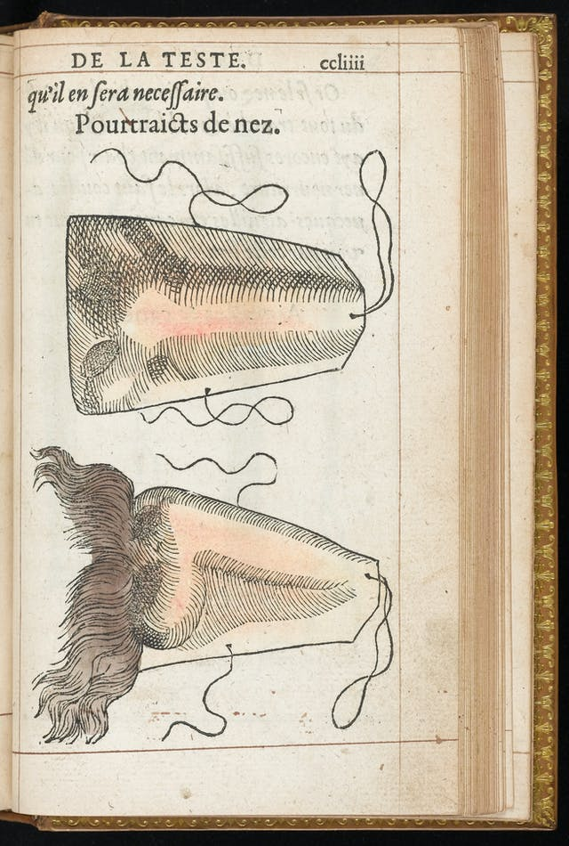 Two drawings of artificial noses on a page of a book.