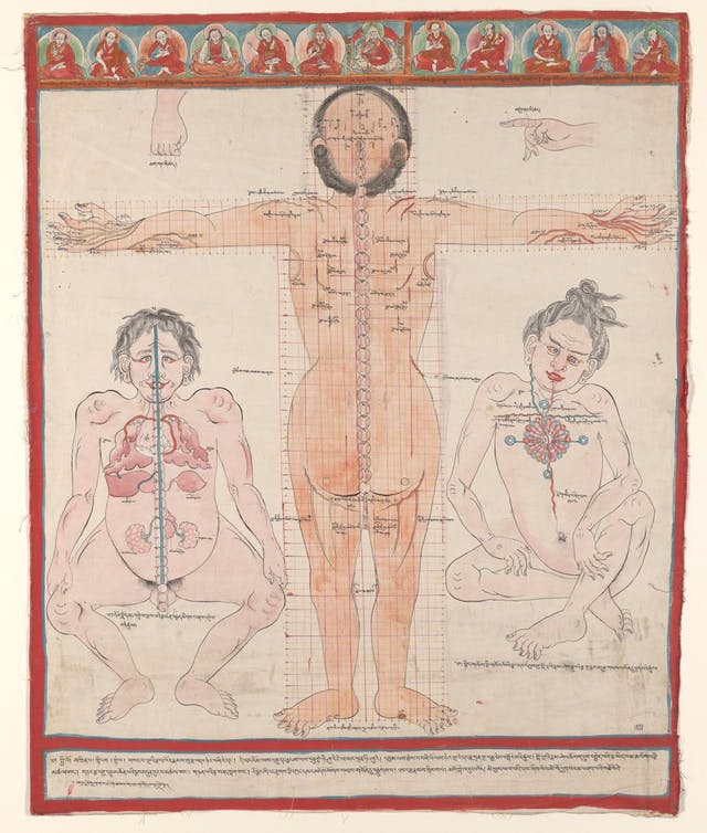 Image of colour drawing of human anatomy on three bodies, one in the middle showing his back, and two smaller bodies facing forward either side.