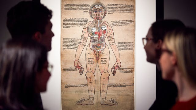 Photograph of visitors exploring the exhibition, Ayurvedic Man: Encounters with Indian medicine at Wellcome Collection.