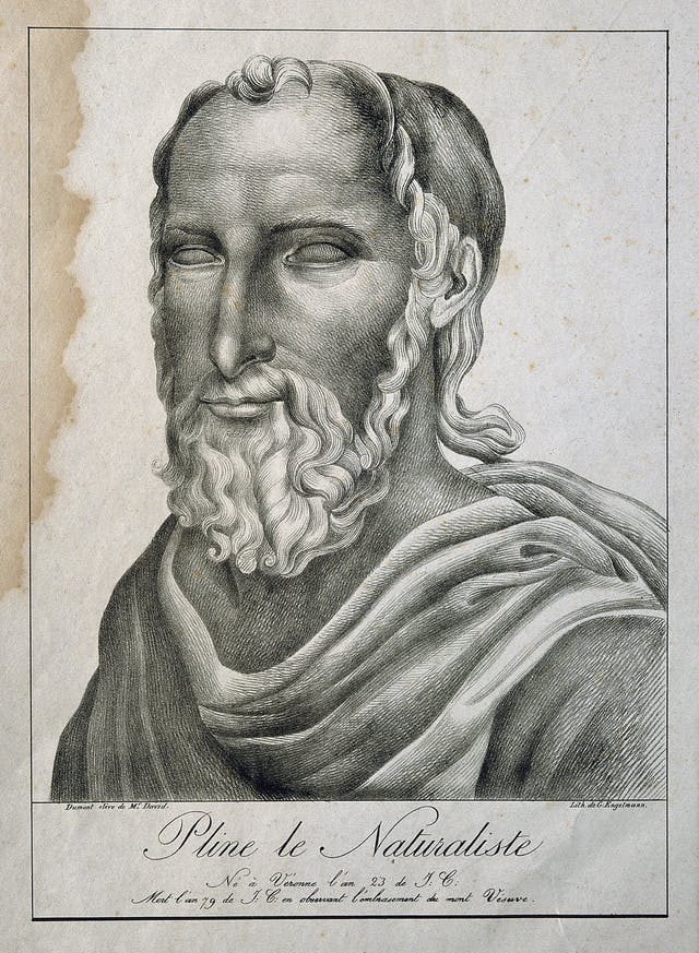 Lithograph of Pliny the Elder
